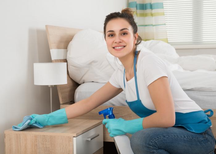 INFA Maîtresse de Maison (H/F) Certificat en Contrat de professionnalisation à Aurillac